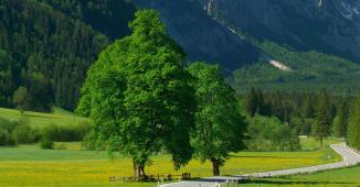 Slovenia_6